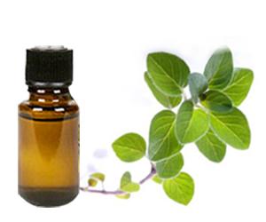oregonic oil
