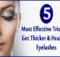 Most Effective Tricks To Get Thicker & Healthier Eyelashes